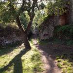 vers la motte castrale et le Roc-aux-Sorciers